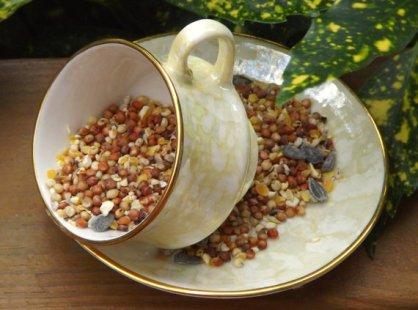Hanging Teacup Birdfeeder-Welcome Spring